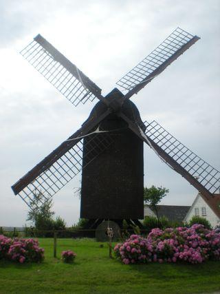 Denmark 485
